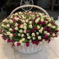 Большая корзина 501 тюльпан микс R295