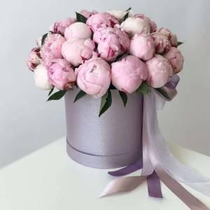 17 розовых пионов в стильной коробке R773