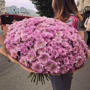 51 ветка розовых хризантем в крафте R1120