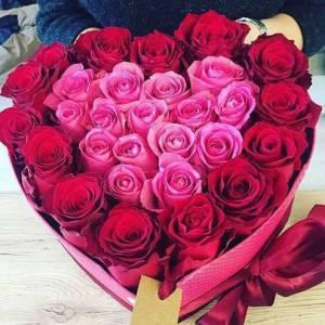 Сердце 25 красных и розовых роз R92