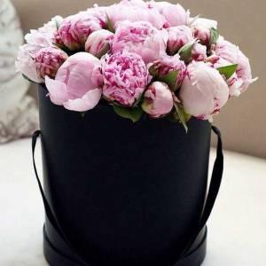 19 розовых пионов в черной коробке R2755