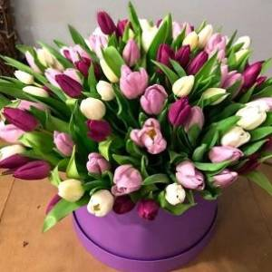 59 разноцветных тюльпанов в коробке R652
